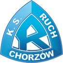 罗切霍茹夫