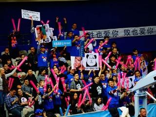"""真爱!上海男篮主场负辽宁男篮 球迷打条幅表白""""败也爱你"""""""